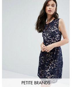 Yumi Petite | Короткое Приталенное Платье С Кружевной Накладкой