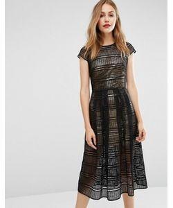 Body Frock | Кружевное Платье С Золотистой Комбинацией Металлик