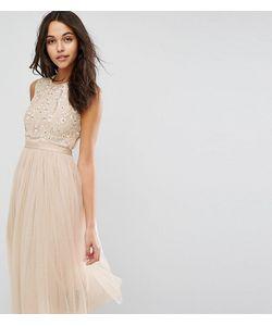 Needle & Thread   Платье Миди Из Тюля С Вышивкой Prarie