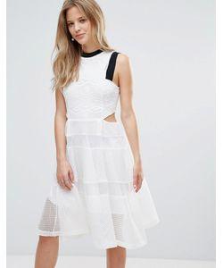 Amy Lynn | Кружевное Платье С Вырезами