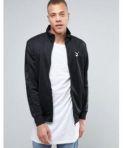 Puma | Черная Спортивная Куртка Urban