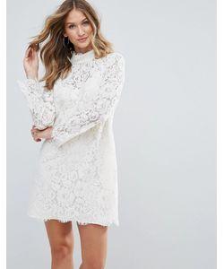 Deby Debo | Кружевное Платье С Высоким Воротом Dorothy
