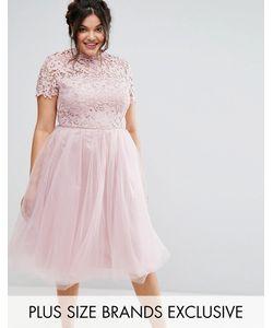 Chi Chi Plus   Платье Миди С Кружевным Лифом Chi Chi London Plus