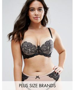 City Chic | Chantilly Multiway Bra