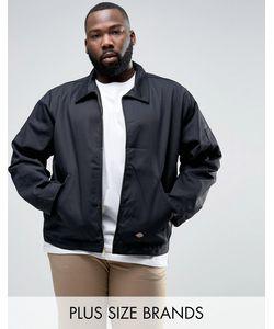 Dickies | Спортивная Куртка Plus