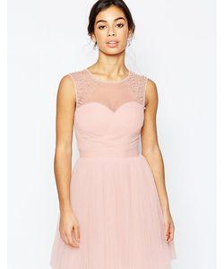 Little Mistress Petite | Платье Для Выпускного С Декоративной Отделкой
