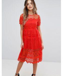 boohoo | Кружевное Приталенное Платье