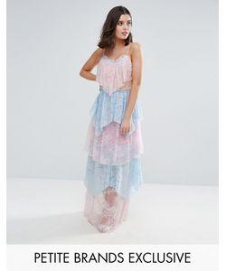 True Decadence Petite | Кружевное Платье Макси