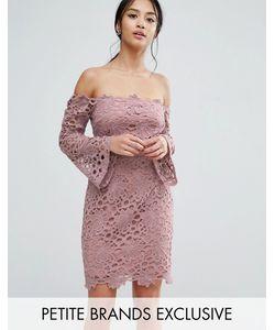 True Decadence Petite | Кружевное Платье Мини С Вырезом Лодочкой