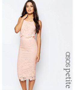 ASOS PETITE | Платье Миди Из Цветочного Кружева С Фигурными Краями