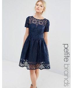 Chi Chi Petite | Кружевное Платье С Вырезной Отделкой И Короткими Рукавами Chi Chi London