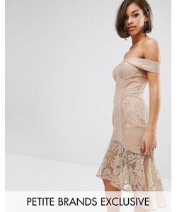 Jarlo Petite | Кружевное Платье-Футляр С Открытыми Плечами