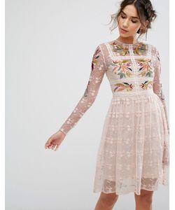 Frock and Frill   Frock Frill Embroide Skater Mini Dress With Lace Trim