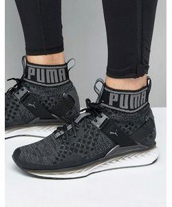 Puma | Черные Кроссовки С Выцветшим Эффектом Ignite Evoknit 18989501