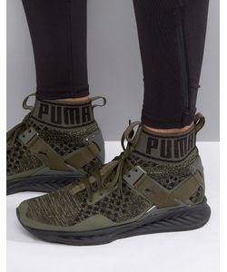 Puma | Зеленые Кроссовки Running Ignite Evoknit 18969705