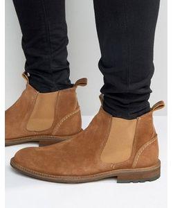 Aldo | Замшевые Ботинки Челси Andreae