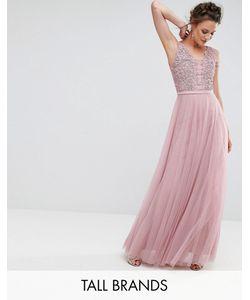 Little Mistress Tall | Платье Макси Для Выпускного С Цветочной Аппликацией