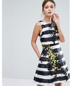 Coast | Короткое Приталенное Платье В Полоску С Цветами Doree