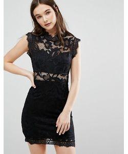 Qed London | Облегающее Платье С Кружевной Отделкой