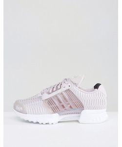 Adidas | Кроссовки Originals Climacool