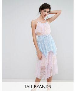 True Decadence Tall | Кружевное Ярусное Платье Миди