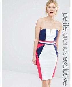 Paper Dolls Petite | Облегающее Платье В Стиле Колор Блок