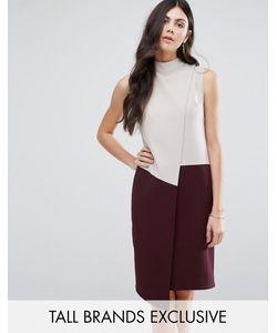 Alter Tall | Асимметричное Платье С Высоким Воротом