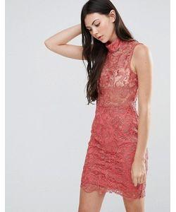 Pixie & Diamond | Кружевное Платье Мини С Высоким Воротом