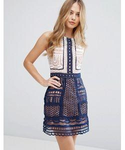 Adelyn Rae | Цельнокройное Платье С Контрастной Кружевной Отделкой