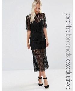 Jarlo Petite | Платье Миди С Кружевной Накладкой