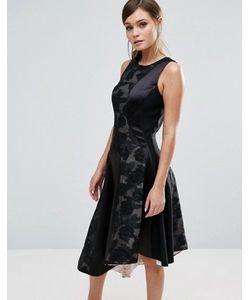 Coast | Асимметричное Платье Со Вставками Wendal