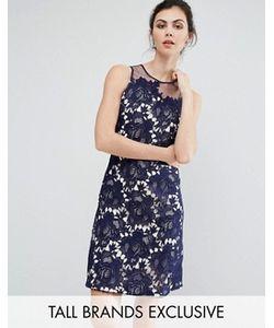 Little Mistress Tall   Кружевное Цельнокройное Платье С Фактурной Отделкой
