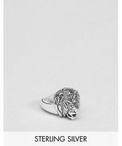 Asos | Серебряное Кольцо Со Львом