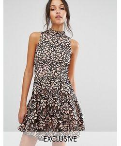 MISSGUIDED   Короткое Приталенное Платье Из Кружева С Высокой Горловиной
