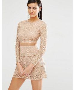 MISSGUIDED   Кружевное Короткое Приталенное Платье С Сетчатой Вставкой