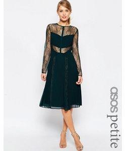 ASOS PETITE | Приталенное Кружевное Платье Миди С Вырезами