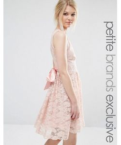 John Zack Petite | Кружевное Платье С Атласным Бантом И Глубоким Вырезом