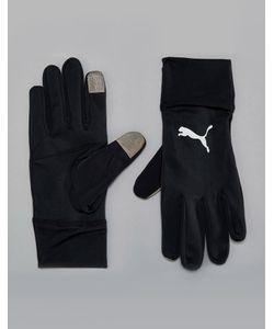 Puma   Черные Перчатки Для Бега Performance 04129401