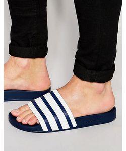 adidas Originals   Шлепанцы Adilette G16220 Синий