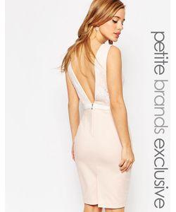 Paper Dolls Petite | Платье-Футляр С Глубоким Вырезом Сзади И Бантиком