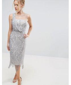 Little Mistress | Кружевное Платье Миди С Фигурной Отделкой По Подолу