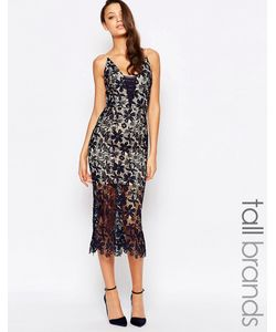 Jarlo Tall | Кружевное Платье Миди Темно-Синий