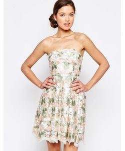 Glamorous | Платье-Бандо С Цветочным Принтом