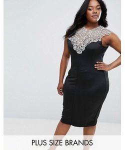 AX Paris | Платье Миди С Кружевным Верхом Plus