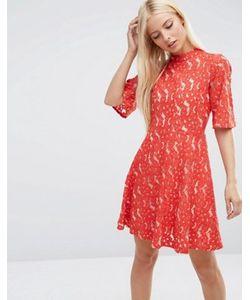 Asos | Короткое Приталенное Платье Мини Из Кружева С Рукавамикимоно