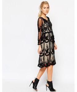 Navy | Короткое Приталенное Платье С Кружевом London Baroque