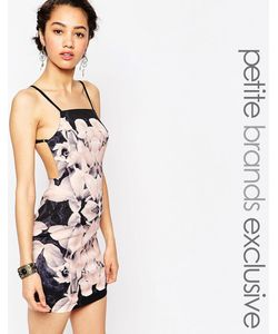 Tiger Mist Petite | Платье Мини С Розоватым Принтом Мульти