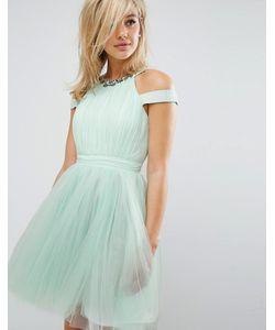Little Mistress | Платье Из Тюля С Отделкой И Высокой Горловиной