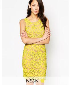 Max C London | Кружевное Облегающее Платье Max C