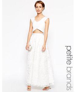 Jarlo Petite | Кружевное Платье Макси С Пышной Юбкой И Принтом Paloma